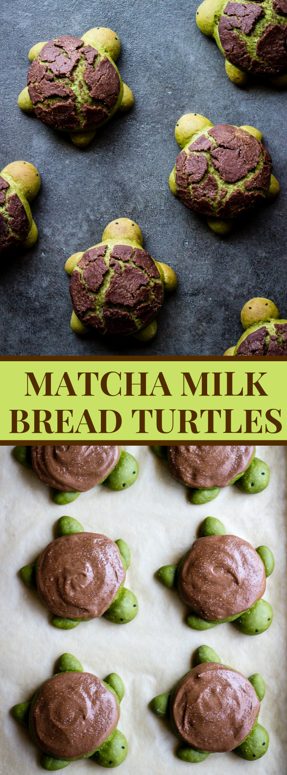 MATCHA MILK BREAD TURTLES #dessert #cookies