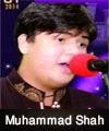 http://www.humaliwalayazadar.com/2015/04/syed-muhammad-shah-nohay-2014-to-2016.html