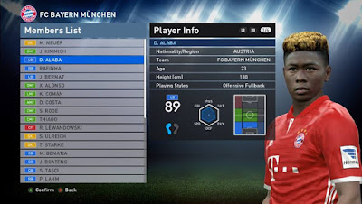 BUNDESLIGA FACEPACK for PTE 5.4