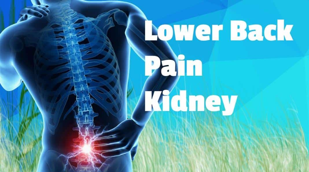 Pain in Lower Back Kidney Area
