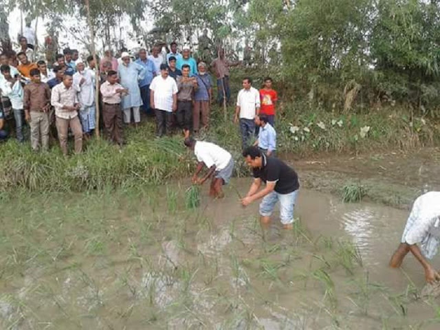 DC-plantation-plant-to-motivate-flood-affected-farmers