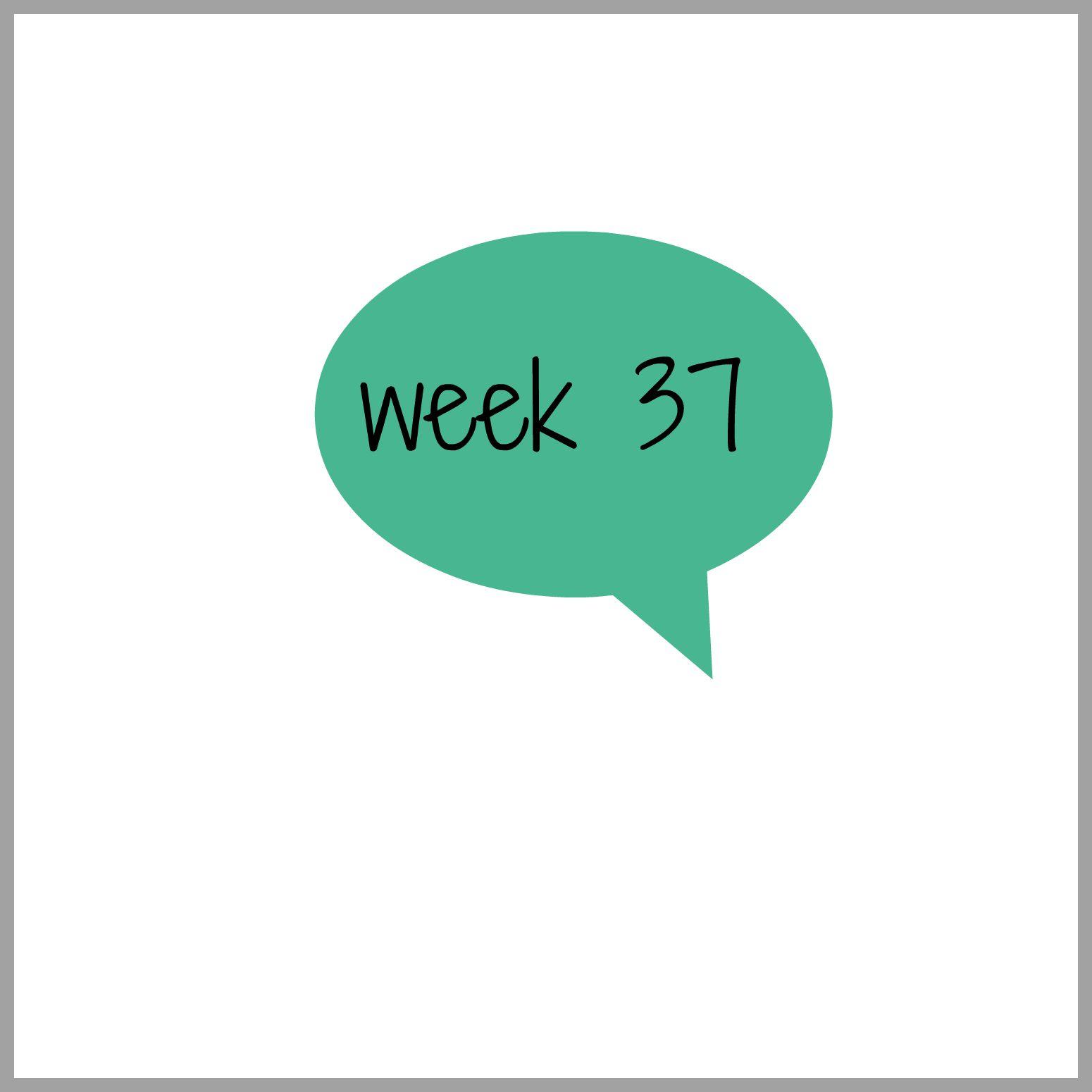 tydzień 37
