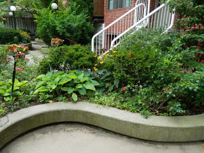 By Paul Jung Gardening Services--a Toronto Organic Gardening Company Garden District Toronto Downtown Cleanup Before