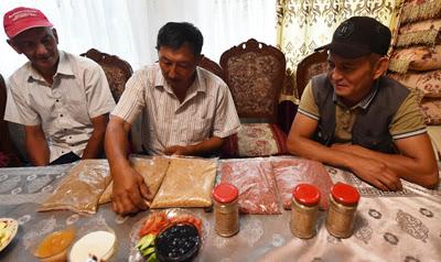 quinoa farming kyrgyzstan, organic foods central asia, kyrgyzstan organic farming
