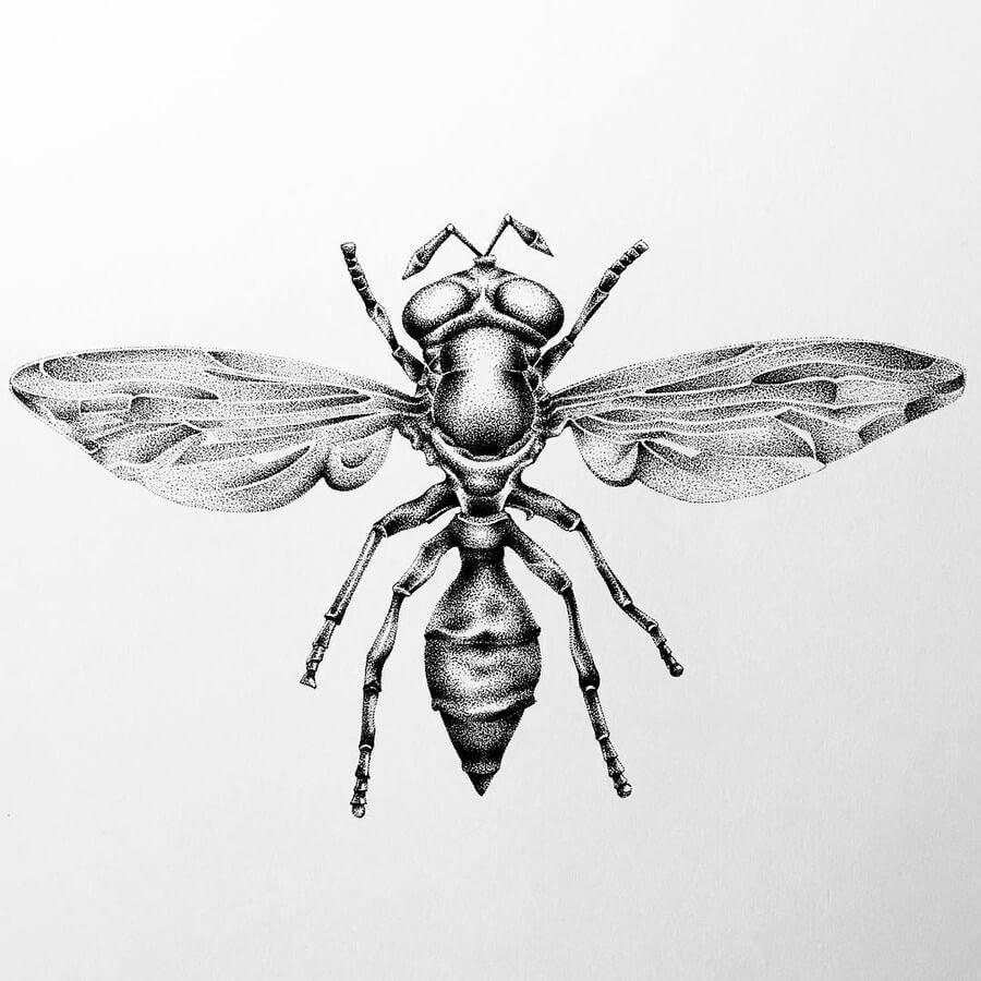 09-The-wasp-Nelly-Todorova-www-designstack-co