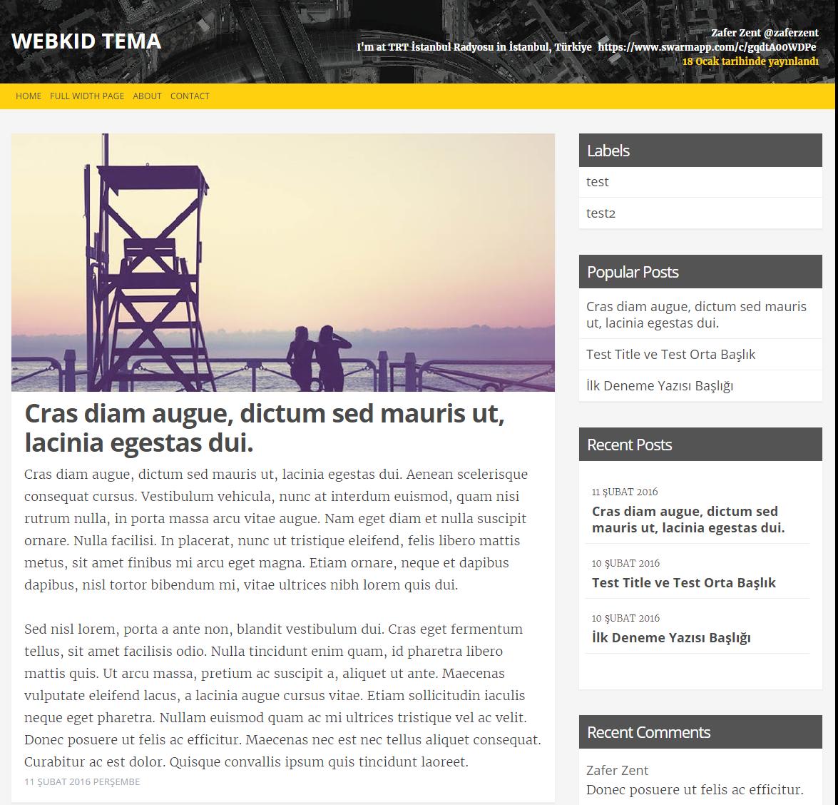 blogger webkid teması