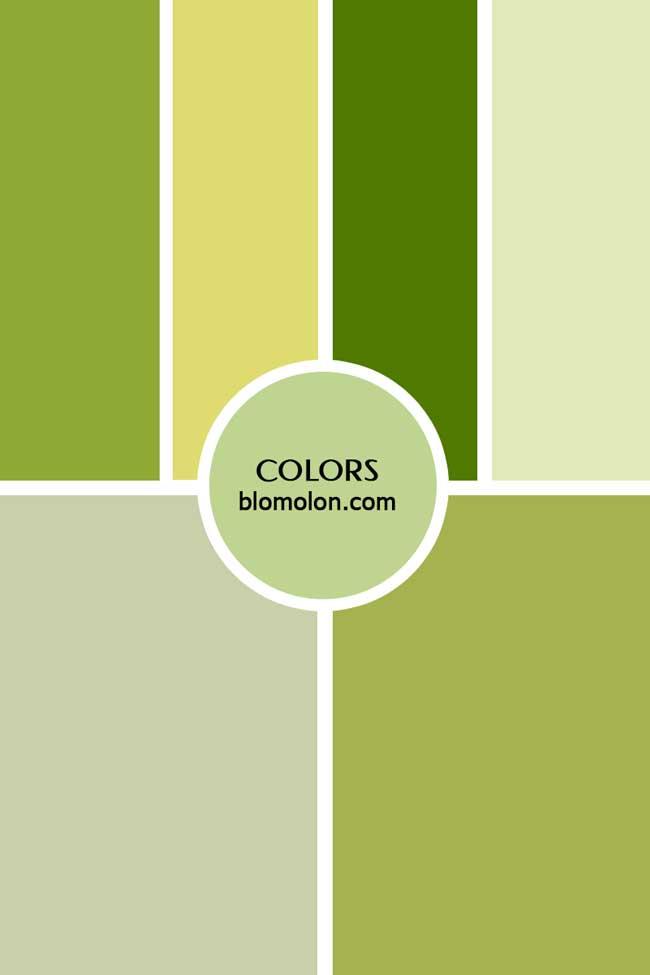 inspiracion_color_5