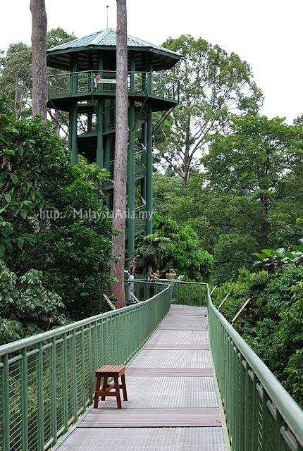 Bird Watching Tower Sabah