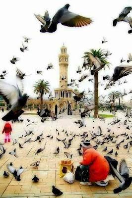 بوستات جميلة منوعة | postat facebook arabic