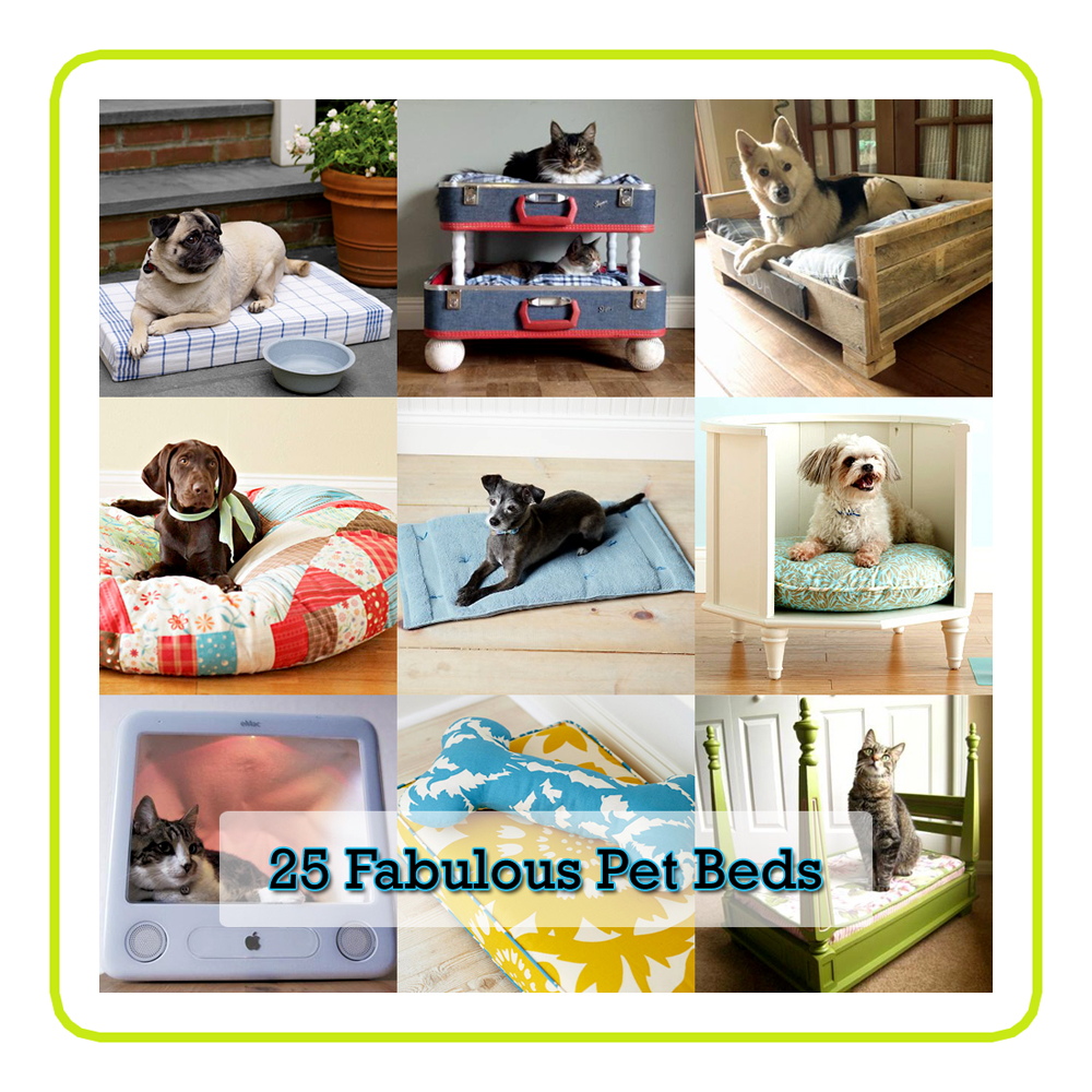 25 Fabulous and Fun DIY Dog Beds