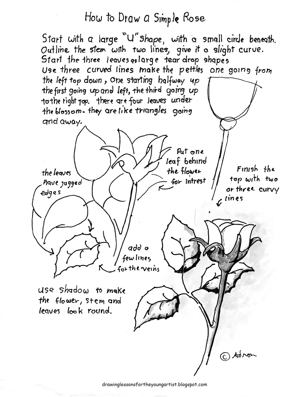 How To Draw A Rose Worksheet Updated