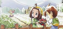 Nikah Muda ? Belajar Dulu Dari Game Harvest Moon