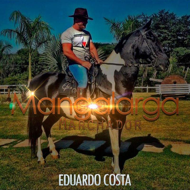 Mangalarga Marchador – Eduardo Costa