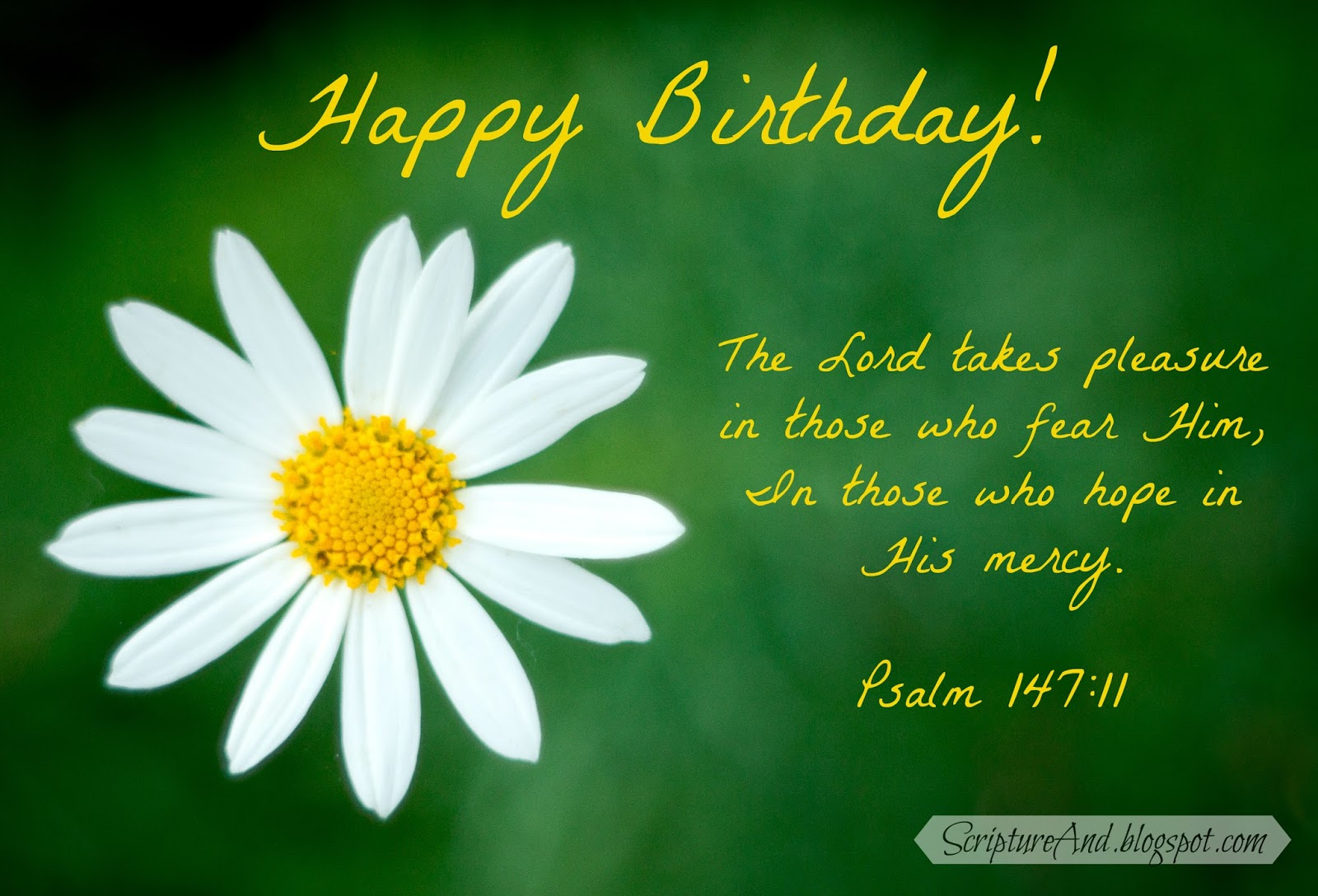 Scripture and free birthday images with bible verses happy birthday image with daisy and psalm 14711 from scriptureandspot kristyandbryce Gallery