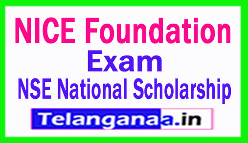 NICE Foundation 2018 NSE National Scholarship Exam