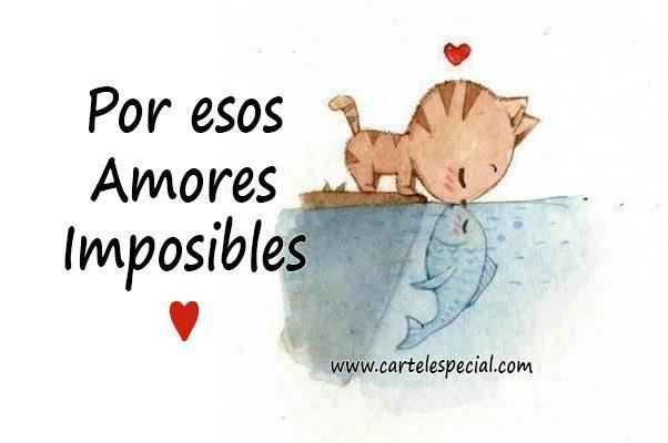 Imagenes Para Facebook Para Descargar: Ver Imagenes De Amor Online Desmotivaciones Con Frases