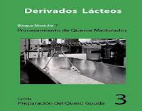 preparación-del-queso-gouda-3