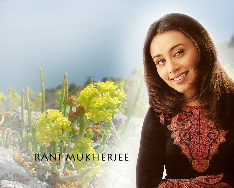 Rani Mukherjee Hot Pictures, Photo Gallery  Wallpapers-2031
