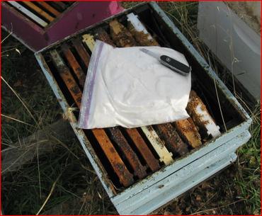 Ποιές βανίλιες του εμπορίου βρέθηκαν τοξικές; Πως θα προστατέψουμε τα μελίσσια μας;