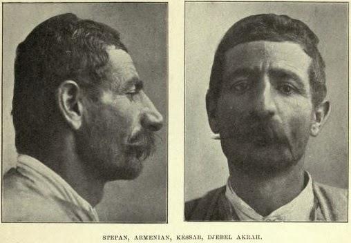 Αποτέλεσμα εικόνας για Ανθρωπολογικοι τυποι Καυκασιοι  Αρμένιοι