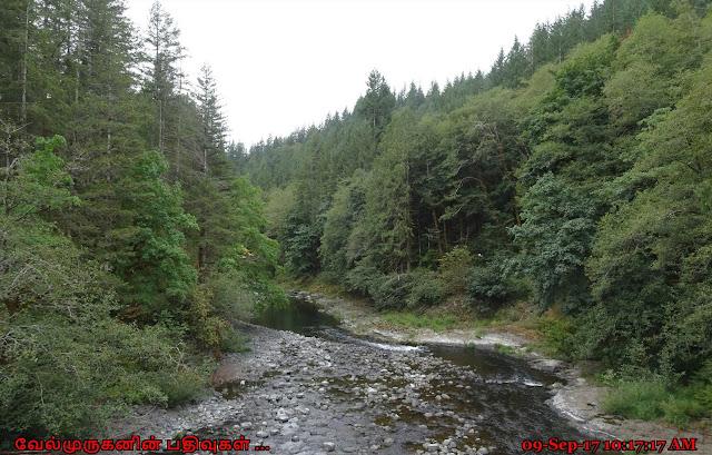 Tillamook Wilson River