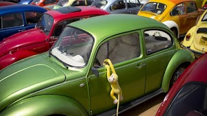 Volkswagen To Stop Manufacturing Of Iconic Beetle