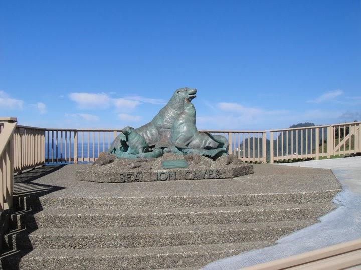 Sea Lion Wall Decor