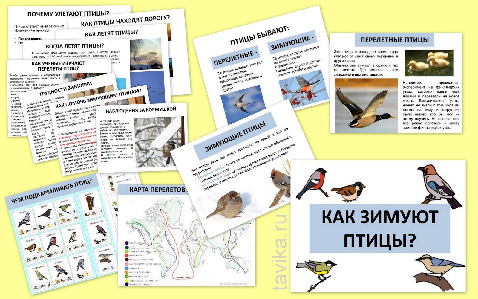 "презентация ""Как зимуют птицы"" для 1 класса"