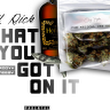LiL RICK WHAT YOU GOT ON IT official video