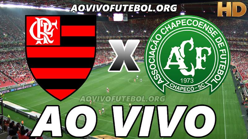 Flamengo x Chapecoense Ao Vivo HD Premiere