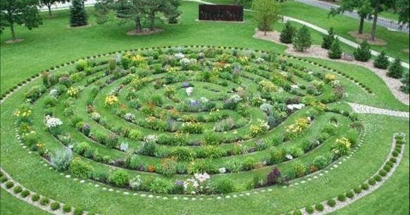 Garden Photo of the Day - A Flowering Labyrinth on