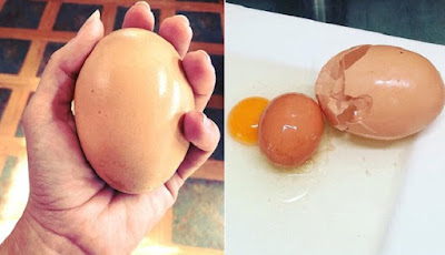 Telur di dalam telur