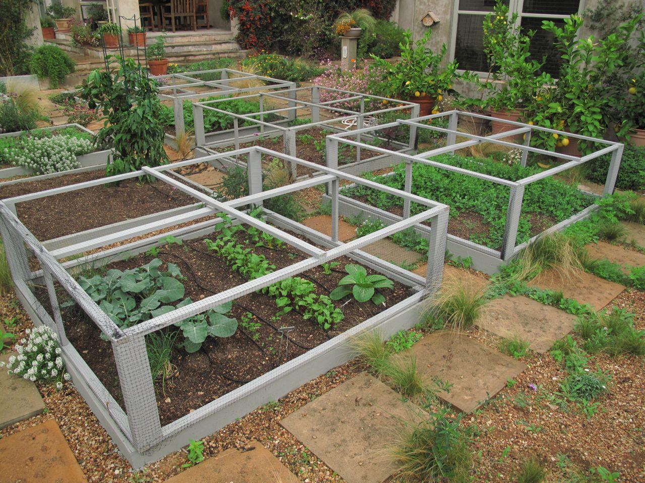 Garden Design For Raised Beds: ROCK ROSE: I'M GOING ALL FANCY