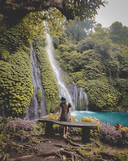 Air Terjun Banyumala, Buleleng