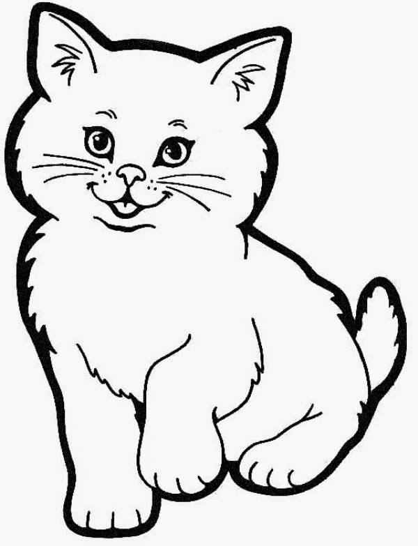 Gambar Mewarnai Anak Kucing