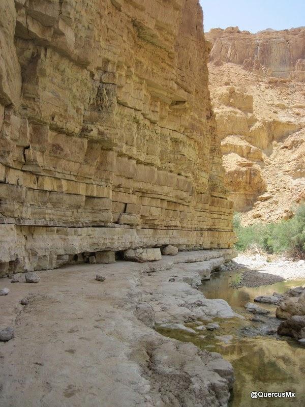 Geología pura en el cañón Wadi Arugot