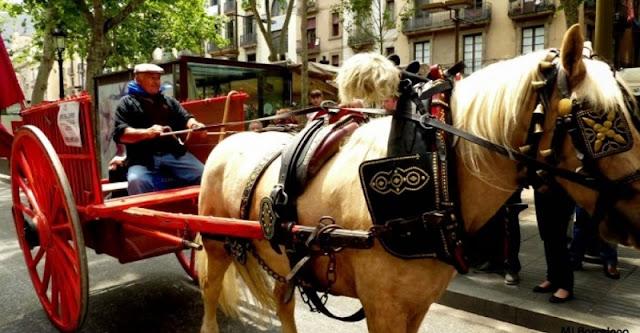 Carruagens em Barcelona