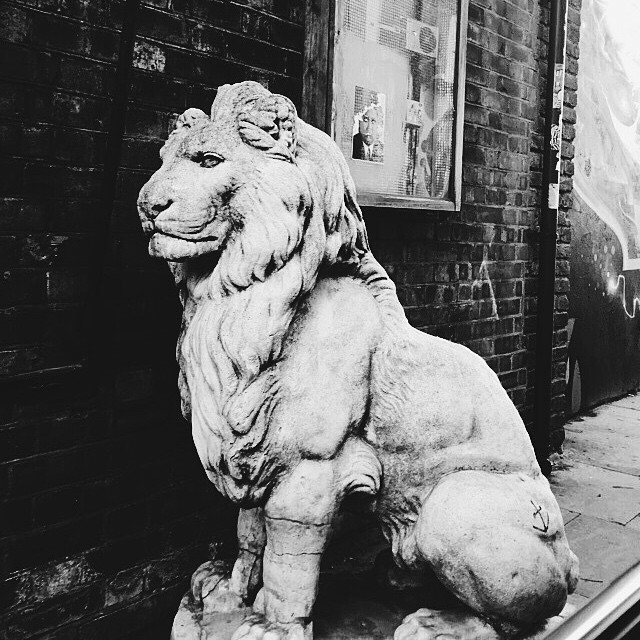 Harry Styles Lion in London.