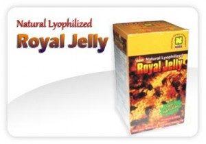 ibu-menyusui-royal-jelly-jual-beli-obat-herbal-nasa-stockis-aman-agen-resmi-yogyakarta