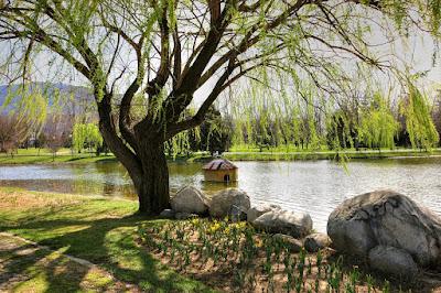 Jalan – jalan Di Bulbous Botanical Park Bursa Turki