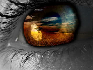 Resultado de imagem para paisagem refletida no olhar