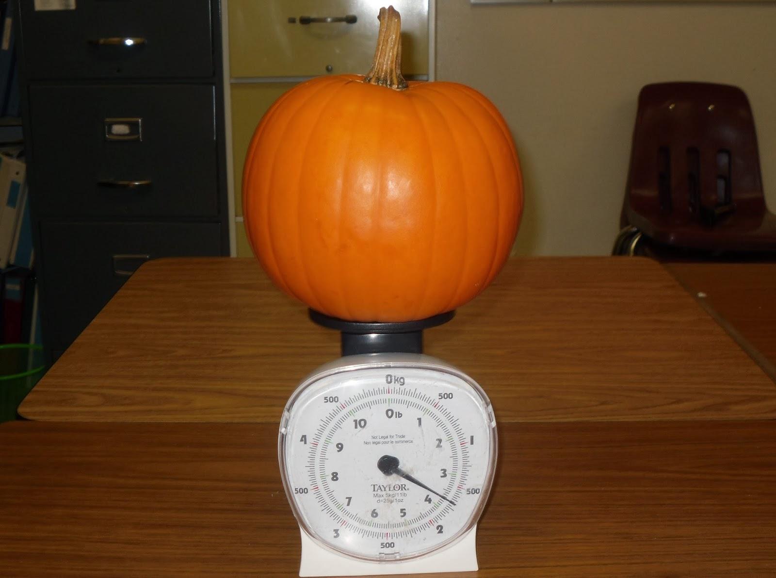 Teaching Math By Hart Pumpkin Math