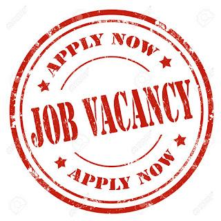 H.A Technician Job at Leading Electronics/Home Appliances Company Lagos
