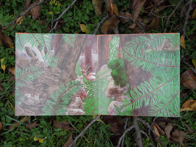 schovavana v prirode lesy a haje