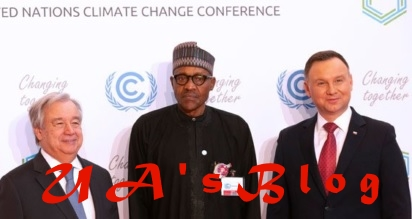 I won't complain again about Nigeria's problems -Buhari
