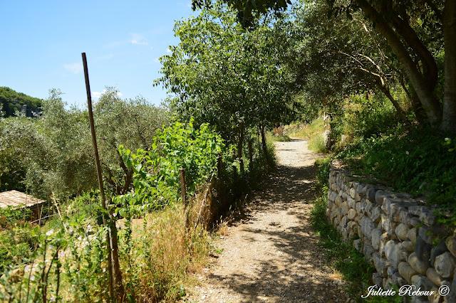 Sentier du Vieil Audon en Ardèche