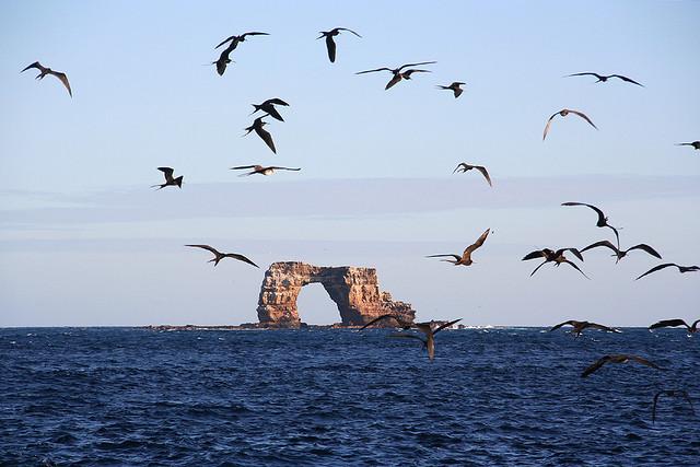 Darwin Island,Galapagos Islands