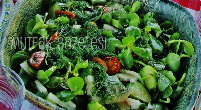soğukluk salatası