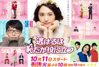 Download Drama Jepang We Married as Job Subtitle Indonesia