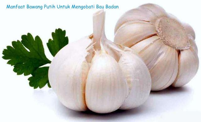 Kegunaan bawang putih, manfaat bawang putih dalam menurunkan bau badan